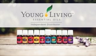 My essential oil story the hot mess kitchen now young living essential oils can be found throughout my home for uses in my diffuser in my kitchen for cooking and even in my car in a mini usb colourmoves